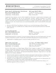 Federal Government Job Resume Examples Template For Jobs Part Builder