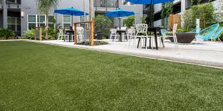Tampa Bay Artificial Grass | Tampa Bay Synthetic Grass Fake Grass Pueblitos New Mexico Backyard Deck Ideas Beautiful Life With Elise Astroturf Synthetic Grass Turf Putting Greens Lawn Playgrounds Buy Artificial For Your Fresh For Cost 4707 25 Beautiful Turf Ideas On Pinterest Low Maintenance With Artificial Astro Garden Supplier Diy Install The Best Pinterest Driveway