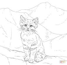 Sand Cat Kitten Coloring Page