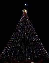 Elgin Christmas Tree Farm Facebook by A Visitor U0027s Guide To Spending The Holidays In Austin Texas