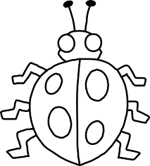 Insect Clipart Black And White
