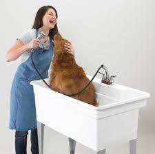 Mustee Mop Sink 24 X 36 by E L Mustee U0026 Sons Utilatub U0026 Utilatwin Laundry Tubs