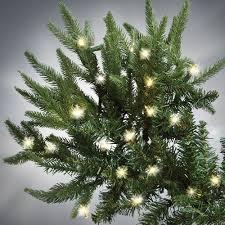 Christmas Trees Prelit Led by The World U0027s Best Prelit Fraser Fir 8 5 U0027 Full Led Hammacher