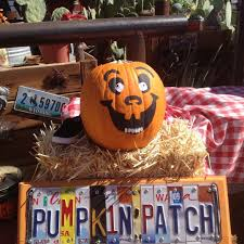 Pumpkin Patch With Petting Zoo Las Vegas by Vegas Family Guide