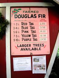 Seattle Christmas Tree Disposal by How Long Do Real Christmas Trees Last Christmas Ideas