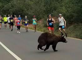 Spirit Halloween Jobs Colorado Springs by Bear Crosses Through Colorado Race Stunning Runners U2013 The Denver Post