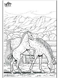 Realistic Horse Coloring Pages For Printable Adults