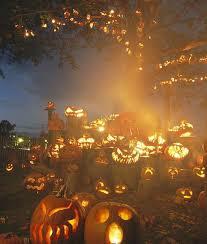 Pumpkin Patch Near Pensacola Fl by 120 Best On My Farm Images On Pinterest Pumpkin Patches