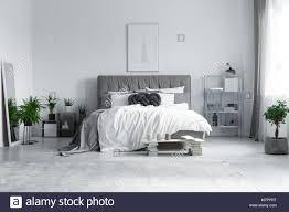 großen grauen teppich auf dem boden in der modernen hellen