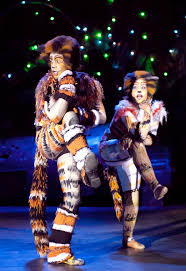 cats on broadway cats the broadway musical whats up for