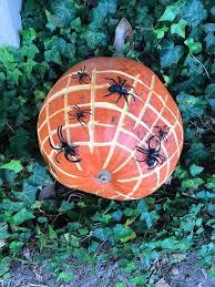 Pumpkin Patch Durham North Carolina by Ragan U0026 Holly U0027s Pumpkin Patch Home Facebook