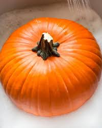 Keep My Pumpkin From Rotting by How To Prepare Your Fresh Pumpkins So They Will Last The Fall