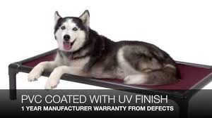 Unchewable Dog Bed by What Is The Best Non Chewable Dog Bed Youtube