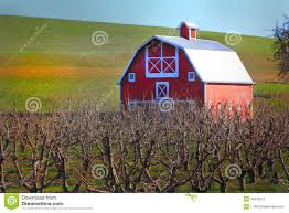 Red Barn And Orchard Stock Photo - Image: 39343311 Rustic Autumn Wedding Weston Red Barn Farm In Kc Mo Mini Shop Cellar Orchard Wood Shed All On And Stock Photo Image 59789270 Minnesota Harvest Apple Weddingreception Venue The At Gibbet Hill Pictures From The Orchard Weve Got Your Favorite Review Of Park Na Usa Oregon Hood River County Barn Pear Building And Golden Ears Coast Mountains Fall Landscape Unique Bolton Ma A Red Schartner Massachusetts Best Horse Designs Hardscape Design