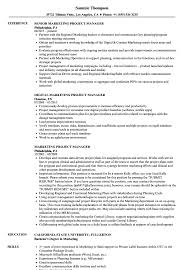 Marketing Project Manager Resume Samples Velvet Jobs Free ... Agile Project Manager Resume Best Of Samples Templates Visualcv 20 Management Key Skills Wwwautoalbuminfo 34 Project Management Examples Salescvinfo Program Finance Fpa Devops Sample Print Cv Example Mplate And Writing Guide Codinator Velvet Jobs Cstruction It Career Roadmap Manager 3929700654 How To Improve It Valid Rumes