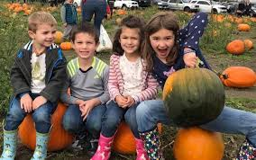 Best Pumpkin Patch Snohomish County by Best Pumpkin Patches And Farms Near Seattle