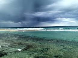 Bathtub Beach Stuart Fl Beach Cam by 14 Best Martin County Florida Images On Pinterest Martin County