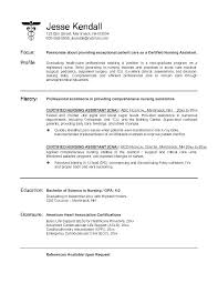 Experience Resume Template Example Of With No Work