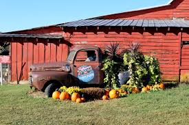Patterson Pumpkin Patch Nc by Tuesday Eats And Adventures Peanut Butter Fingers