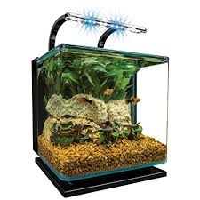 Spongebob Aquarium Decor Amazon by Spongebob Aquarium Decor Amazon 100 Images 37 Best Fish Tank