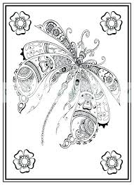 Coloring Pages Dragonfly Page Adult Print Out Worksheet Colouring Download Cute To Book