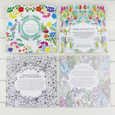 Secret Garden An Inky Treasure Hunt And Coloring Book Children Adult Relieve Stress Kill Time Graffiti Painting Drawing Free Shipping