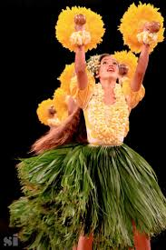 Halloween Express Conway Ark by Best 25 Hula Costume Ideas On Pinterest Lilo Costume Lilo