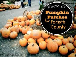 Best Atlanta Pumpkin Patch by Pumpkin Patches Archives Local Things To Do In