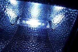eclairage led pour aquarium eau de mer eclairage récifal