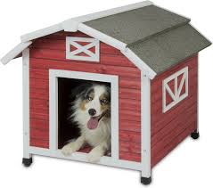 Precision Pet Products Old Red Barn Dog House, Large - Chewy.com Good Ideas Chicken Coop With Nesting Box And Roosting Bar Features Summerhawk Ranch Extra Large Victorian Teak Barn Abc Acres Chickens Old Red 37 With Medium Coops That Rooftop Roof Top Planter Precision Pet Products Dog House Chewycom Scolhouse Saloon 22 Diy You Need In Your Backyard Quality Built Nesting Boxes Doors Ramps Best Housing Review Position
