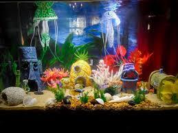 Star Wars Themed Aquarium Safe Decorations by My African Cichlids Enjoy Their