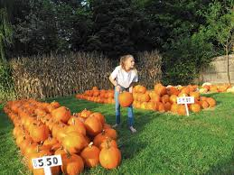 Pumpkin Patch Festival Milwaukee by Fall Is The Time To Visit Pumpkins Farms And Farmers Markets In