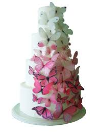 cake decorations toppers ombre edible butterflies in pink cake