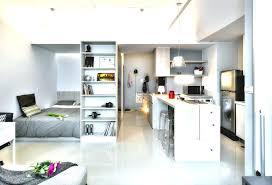 100 Small One Bedroom Apartments Interior Design Room Apartment And With Interior Design