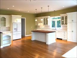 Kitchen Kompact Cabinets Complaints by 100 Kitchen Cabinets To Go Best 25 Glass Cabinet Doors