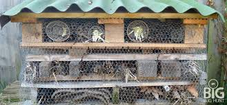 Attracting Insects To Your Garden by Garden Pests Insect Hotels Attract Beneficial Insects Into Your