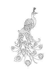 Peacock Bird Coloring Pages To Print