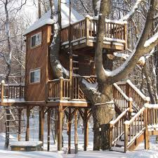 A Dream Treehouse Grew In Nebraska Thanks To A Reality TV