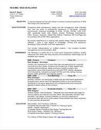Educati Business Rhcom Cv Template Volunteer Work Custovolunteer On Application Resume Examples Highlighting Education