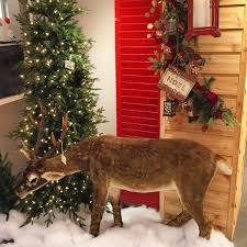 Raz Christmas Trees by Raz Imports 51