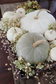 Pumpkin Moon Oak Park Illinois by How To Decorate With White Pumpkins French Country Cottage