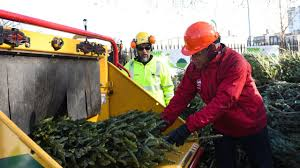 Christmas Tree Disposal Nyc by How To Recycle Your Christmas Tree Home Decorating Interior