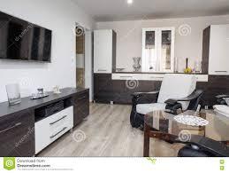 moderne möbel im wohnzimmer stockfoto bild modern