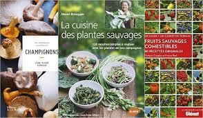 cuisine plantes sauvages sélection de livres pour la cuisine sauvage par plus bon que nature
