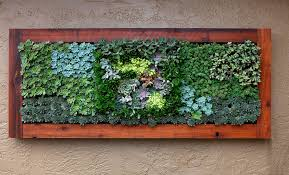 Succulent Treatment Living Wall Art Handmade Wonderful Decoration Painting Outdoor Adorable Amazing Large Size