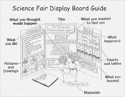 Science Fair Presentation Board Template 25 Best Ideas About Project