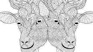 Goat Face Coloring Pages Wondroustrange
