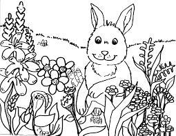Rabbit The Flowers Coloring Sheet
