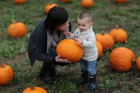 Columbus Ohio Pumpkin Patches by Best Pumpkin Patches Near Portland