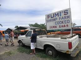 Fumi's, A Kahuku Shrimp Truck (really A Stall) Where We Had Lunch On ... Almost Kahuku Garlic Shrimp Truck Fix Feast Flair Oahu Food Trucks Youtube Romys Prawns North Shore Hawaii What Are Oahus Best Food Trucks Warning May Cause Hunger Pains No Snakes On A Plane But From Aloha To Trip Giovannis In And The Original Kahuku Everything Glitters Camaron Photos The Pickiest Eater In World Haing Loose At Johnny Kahukus For Famous Yelp Unlocking The Secrets Of Ingas Adventures